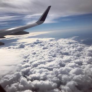 flight-views
